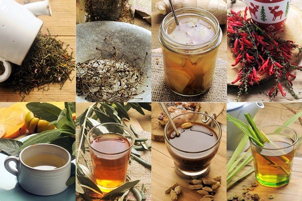 difference-the-tisane