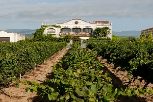 winery-alsina-sarda-cava-penedes