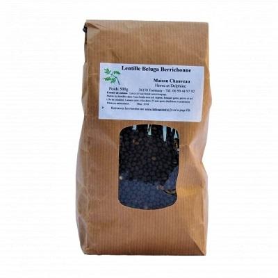 lentille-bio-berry