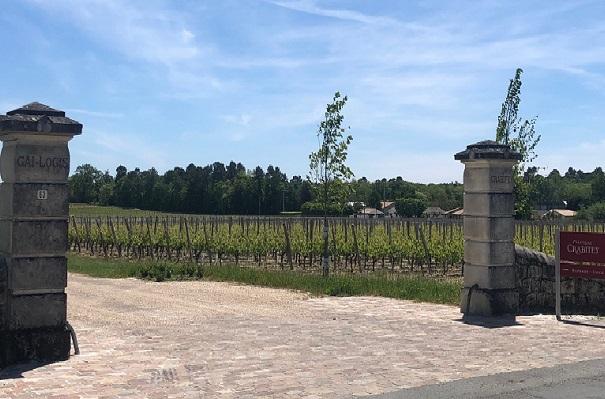 vins-graves-chateau-crabitey