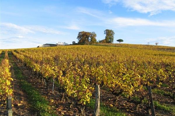 Domaine Sauternes Chateau Lamothe Guignard La Gourmet box coffret cadeau vin