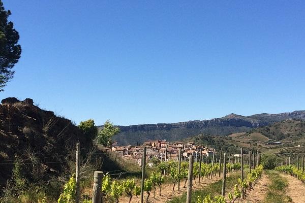 Priorat gratallops et licorellas coffret vin espagnol
