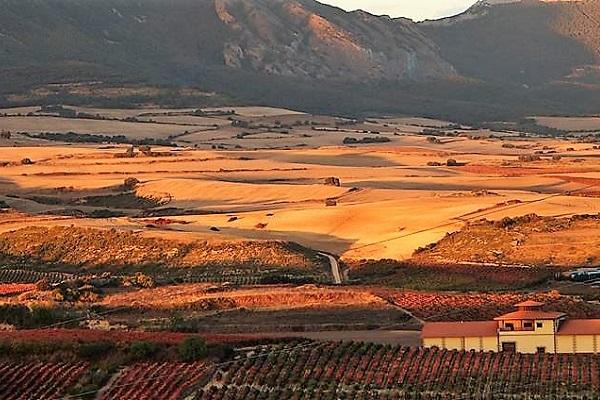 vin rioja Oscar Tobias Reserva coffret cadeau
